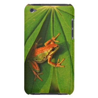 USA, Washington, Seattle, Discovery Park 2 iPod Touch Cover
