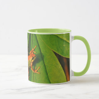 USA, Washington, Seattle, Discovery Park 2 Mug