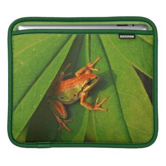 USA, Washington, Seattle, Discovery Park 2 Sleeve For iPads