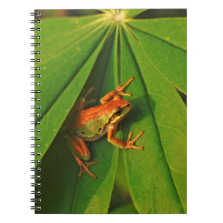 USA, Washington, Seattle, Discovery Park 2 Spiral Notebook