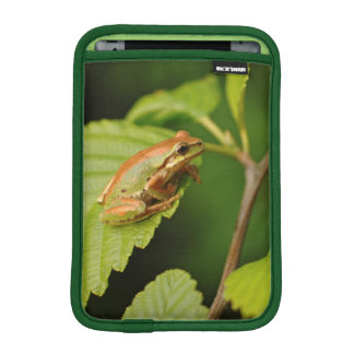 USA, Washington, Seattle, Discovery Park iPad Mini Sleeve