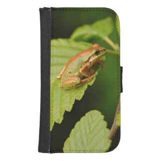 USA, Washington, Seattle, Discovery Park Samsung S4 Wallet Case