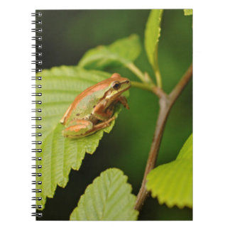 USA, Washington, Seattle, Discovery Park Spiral Notebook