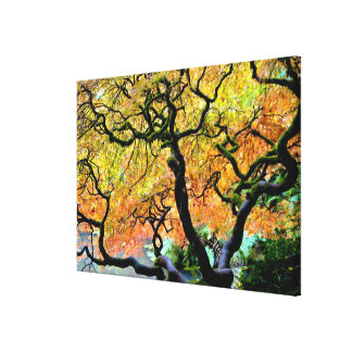 USA, Washington, Seattle, Kubota Garden. Canvas Print