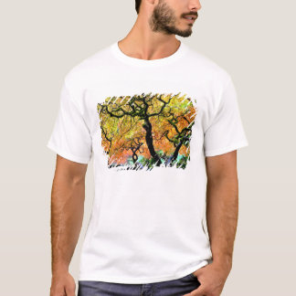 USA, Washington, Seattle, Kubota Garden. T-Shirt