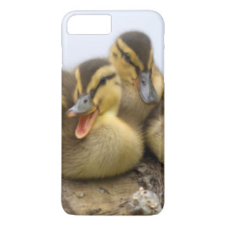 USA, Washington, Seattle, Lake Washington iPhone 8 Plus/7 Plus Case