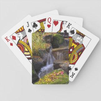 USA, Washington, Seattle Playing Cards