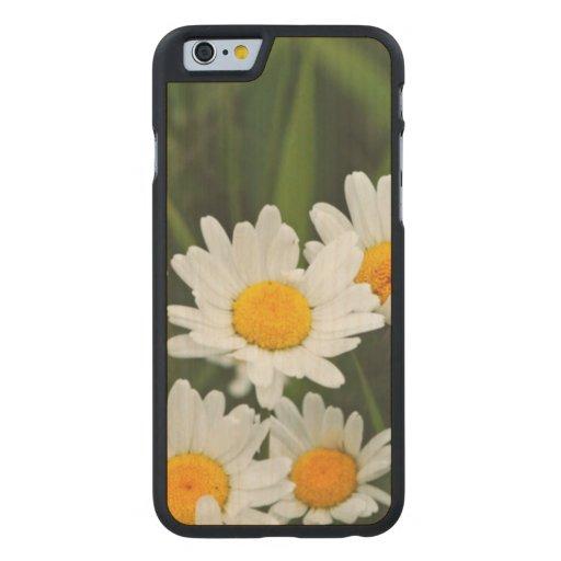 USA, Washington, Seattle, Puget Sound 3 Carved® Maple iPhone 6 Slim Case