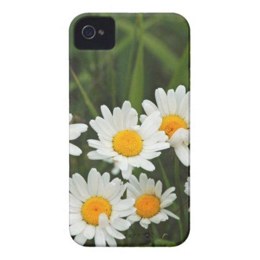 USA, Washington, Seattle, Puget Sound 3 iPhone 4 Case-Mate Case