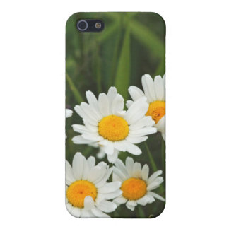 USA, Washington, Seattle, Puget Sound 3 Cover For iPhone 5/5S