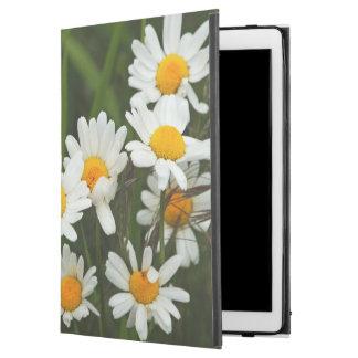"""USA, Washington, Seattle, Puget Sound 3 iPad Pro 12.9"""" Case"""