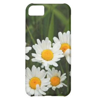 USA, Washington, Seattle, Puget Sound 3 iPhone 5C Case