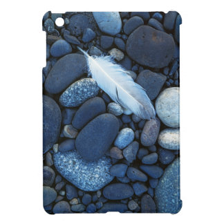 USA, Washington, Snake River Gravel Bar Cover For The iPad Mini