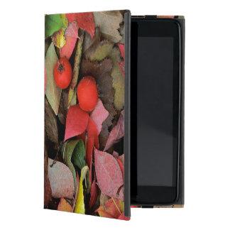 USA, Washington, Spokane Co., Hawthorn Leaves Cover For iPad Mini
