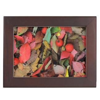 USA, Washington, Spokane Co., Hawthorn Leaves Keepsake Box