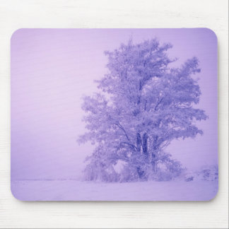 USA, Washington, Spokane County, Frosted Mouse Mat