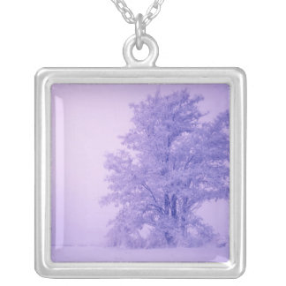 USA, Washington, Spokane County, Frosted Silver Plated Necklace
