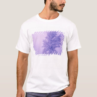 USA, Washington, Spokane County, Frosted T-Shirt