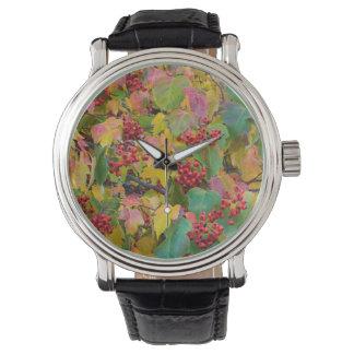USA, Washington, Spokane County, Hawthorn Leaves 2 Wrist Watch