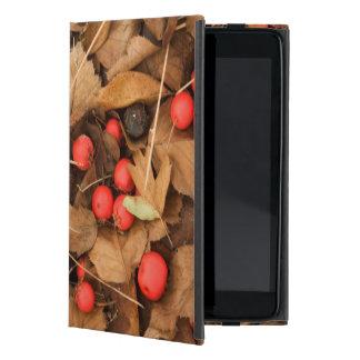 USA, Washington, Spokane County, Hawthorn Leaves iPad Mini Cover
