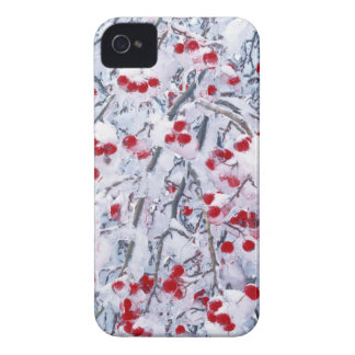 USA, Washington, Spokane County, Riverside State iPhone 4 Case-Mate Case