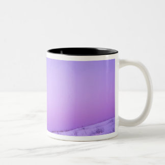 USA, Washington, Spokane County, Riverside Two-Tone Coffee Mug