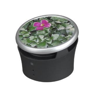 USA, Washington, Spokane County, Rockress Bluetooth Speaker
