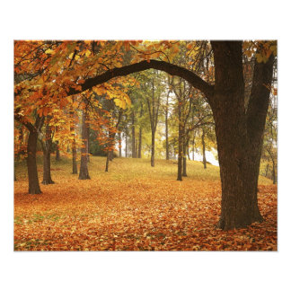 USA, Washington, Spokane, Manito Park, Autumn 2 Photo Print