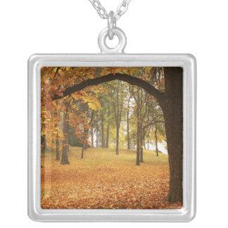 USA, Washington, Spokane, Manito Park, Autumn 2 Silver Plated Necklace