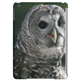 USA, Washington State. Barred Owl (Strix varia) iPad Air Cover