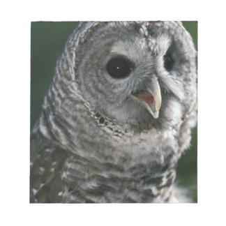 USA, Washington State. Barred Owl (Strix varia) Notepad