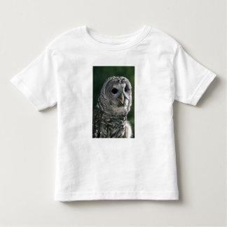 USA, Washington State. Barred Owl (Strix varia) Toddler T-Shirt