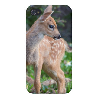 USA, Washington State. Blacktail Deer Fawn Case For The iPhone 4