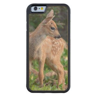 USA, Washington State. Blacktail Deer Fawn Maple iPhone 6 Bumper