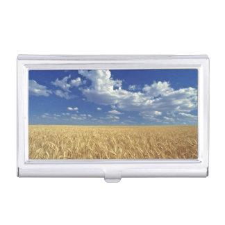 USA, Washington State, Colfax. Ripe wheat Business Card Holder