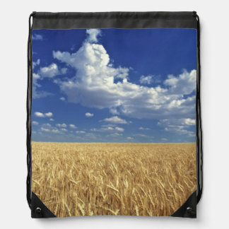 USA, Washington State, Colfax. Ripe wheat Drawstring Bag