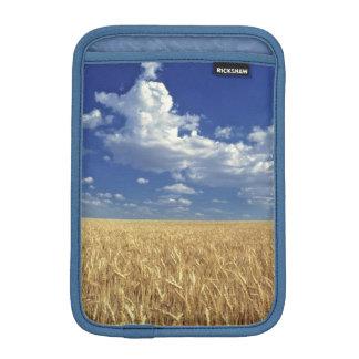 USA, Washington State, Colfax. Ripe wheat iPad Mini Sleeve