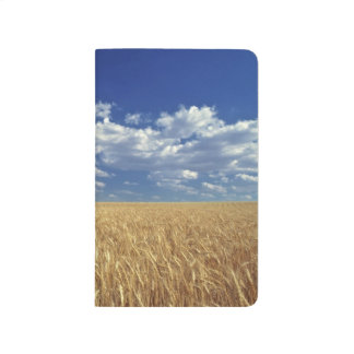 USA, Washington State, Colfax. Ripe wheat Journal