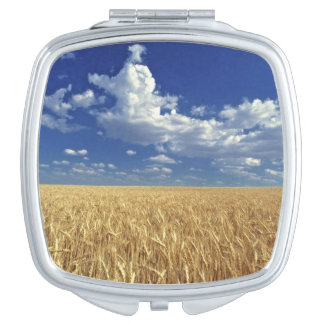 USA, Washington State, Colfax. Ripe wheat Makeup Mirror