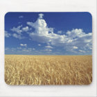 USA, Washington State, Colfax. Ripe wheat Mouse Mat