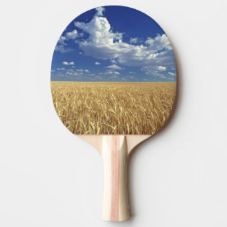 USA, Washington State, Colfax. Ripe wheat Ping Pong Paddle