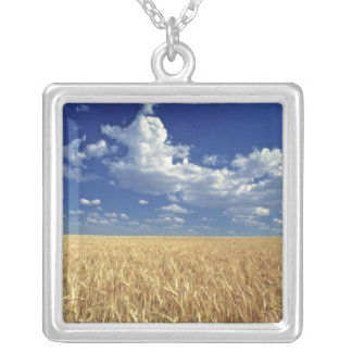USA, Washington State, Colfax. Ripe wheat Silver Plated Necklace