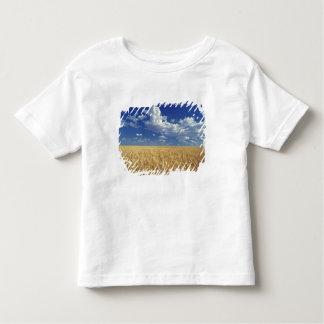 USA, Washington State, Colfax. Ripe wheat T-shirts