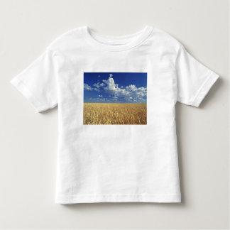 USA, Washington State, Colfax. Ripe wheat Toddler T-Shirt