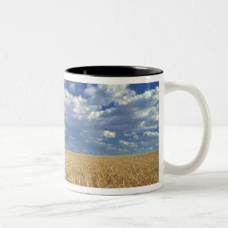 USA, Washington State, Colfax. Ripe wheat Two-Tone Coffee Mug
