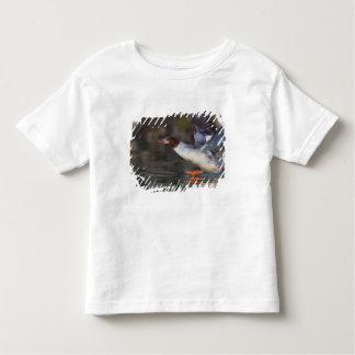 USA, Washington State,Common T Shirts