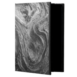 USA, Washington State. Douglass Fir iPad Air Case
