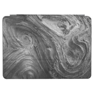 USA, Washington State. Douglass Fir iPad Air Cover