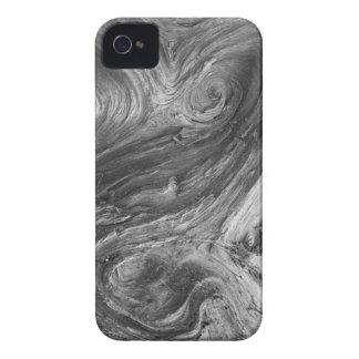 USA, Washington State. Douglass Fir iPhone 4 Case-Mate Case