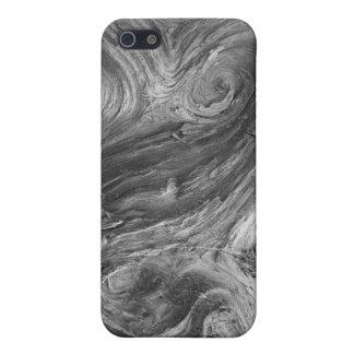 USA, Washington State. Douglass Fir iPhone 5/5S Cover
